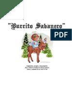 17 Burrito Sabanero_g