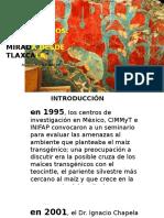 360-635 Bioética y Maíces Transgénicos. Una Mirada Desde Zacatelco Tlaxcala