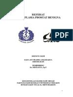 0001718171811111-Referat-BPH