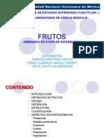 FRUTOS-SEMINARIO