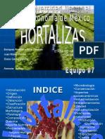 HORTALIZAS-INFORMACION