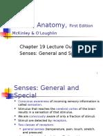 Special Senses Presentation