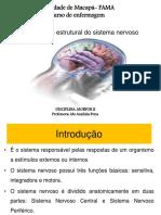 Aula 1 Sistema Nervoso Central Estruturas