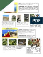 8 Regiones naturalez del peru