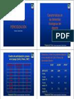 Preparacion Fisica Periodizacion 2013 PROFESORADO