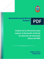 ANALISIS_DIRECTRICES_BENV