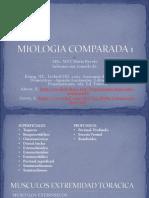 MIOLOGIA COMPARADA 1