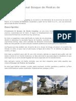 Santuario Nacional Bosque de Piedras de Huayllay.docx