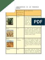 Producción y Características de Los Principales Cereales en el mundo