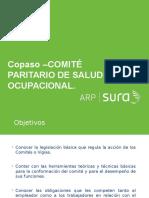 213202772-PRESENTACION-COPASO.ppt