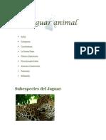 Sub Especie de Jaguar