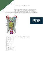 Elemntele Componente Ale Motorului