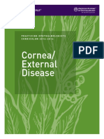 Cornea (1)
