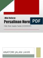 Persalinan Normal (Referat)