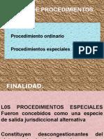 1._PROCEDIMIENTO_ABREVIADO
