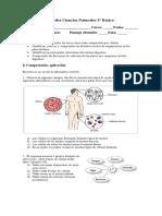 Prueba Ciencias Naturales 5 celulas y sist digestivo.docx