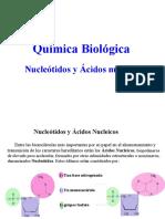 4.Nucleicos Biológica 2015 (1)