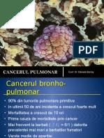 Cancerul pulmonar 2013