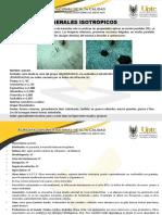 Minerales Isotropicos
