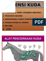 Pakan Kuda