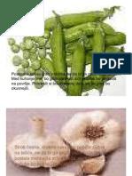 nasveti-zelenjava-vrtnine