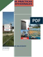 Informe de Practicas Pre Profesionales Petroperu