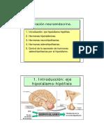 Integracixn_neuroendocrina