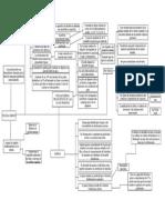 Mapa Conceptual Polisacaridos