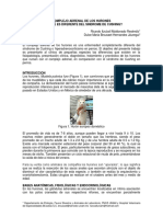 Congreso Guadalajara AMVZACJ 5 Complejo Adrenal de Los Hurones