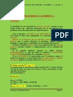 28_EJERCICIOS_RESUELTOS_DE_ENERGHIA_CALO.pdf