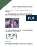 1. Pemeriksaan Pupil