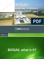 8- Company Profile_IES BIOGAS