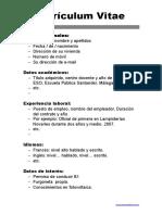 Curriculum Vitae Basico