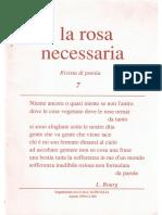 la rosa necessaria n. 7