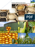 30th December,2015 Daily Exclusive ORYZA Rice E-Newsletter by Riceplus Magazine