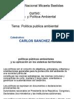Politica Ambienta Pajares