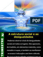Estrutura Social e as Desigualdades