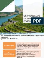 Problemas Da Agric. Port. III - 15-16