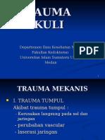 Trauma Okuli