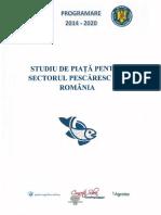 Studiu de Piata Versiune Oficiala Februarie 2015