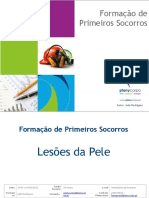 8.Lesoes Da Pele