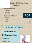 Lcture Notes - Tissues
