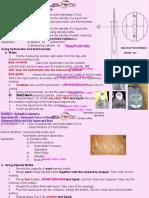 H1 Fluid Characteristics and Hydrostatic Force
