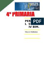 P.S.  IV BIM