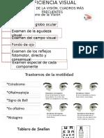 Deficiencia Visual