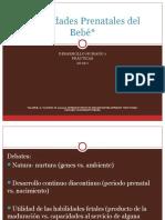 Capacidades fetales