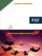 Soneri Annual Report 2010