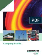 Bremskerl Company Profile (1)