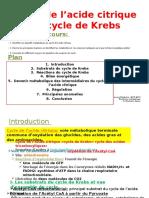Bouhsain Cycle de L_acide Citrique