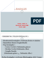 Ganglia Basalis,Dr Risal Snc 2